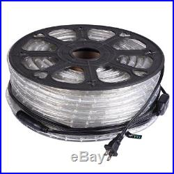DELight 150' Cool White 2 Wire LED Rope Light Home Party Xmas In/Outdoor Decor